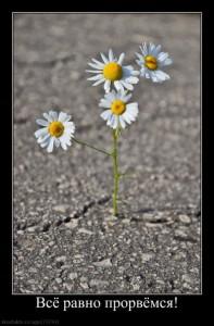 Как найти смысл жизни, поиск призвания